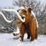 <b>Мамонты в Москве - Парк ледникового периода</b>
